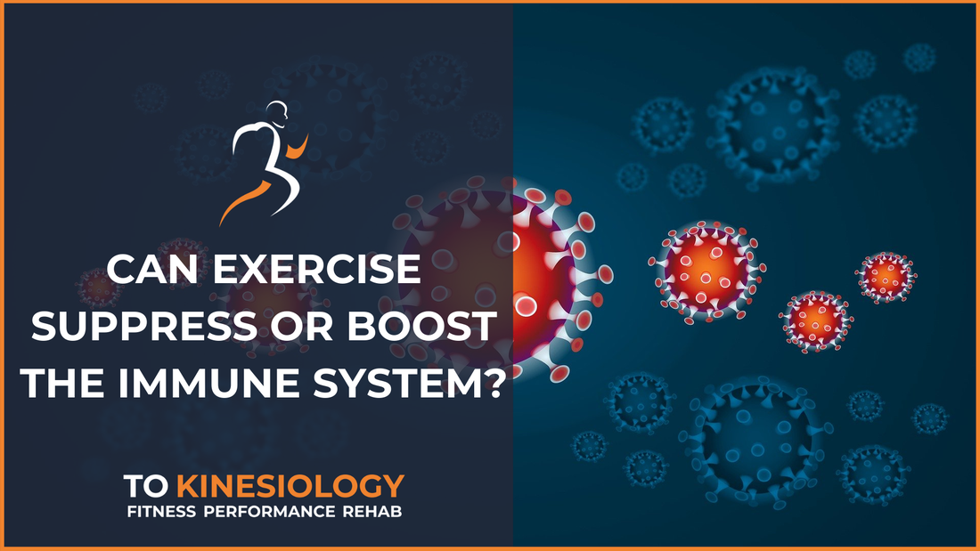 Does exercise surpress or boost the immune system